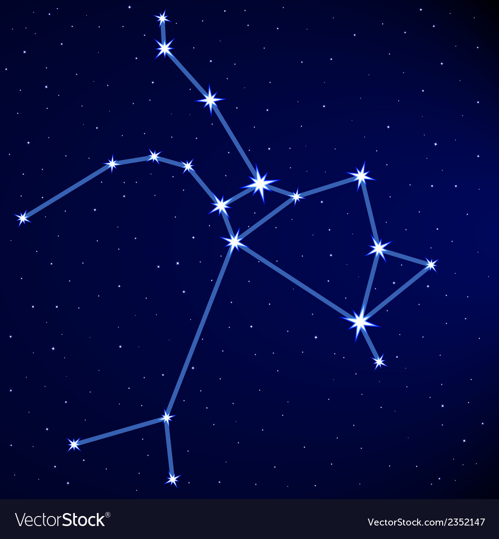 Sagittarius vector | Price: 1 Credit (USD $1)