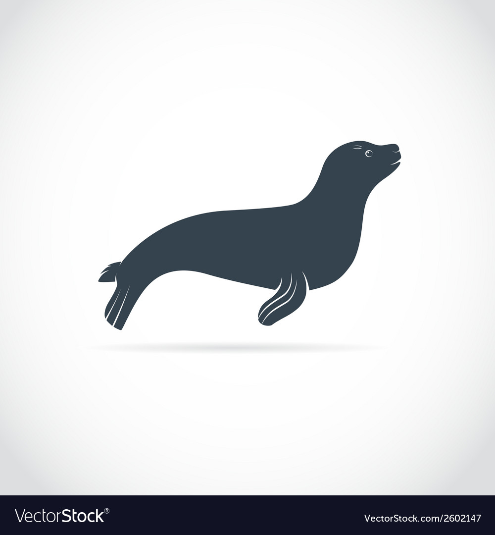 Sea lion vector | Price: 1 Credit (USD $1)