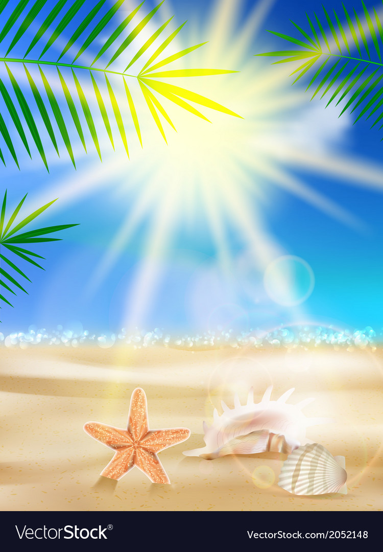 Day with sand shells and palm leaves vector | Price: 1 Credit (USD $1)