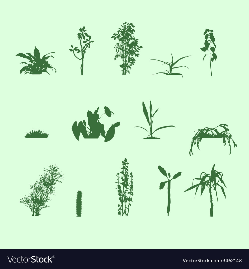 Silhouettes plants vector | Price: 1 Credit (USD $1)