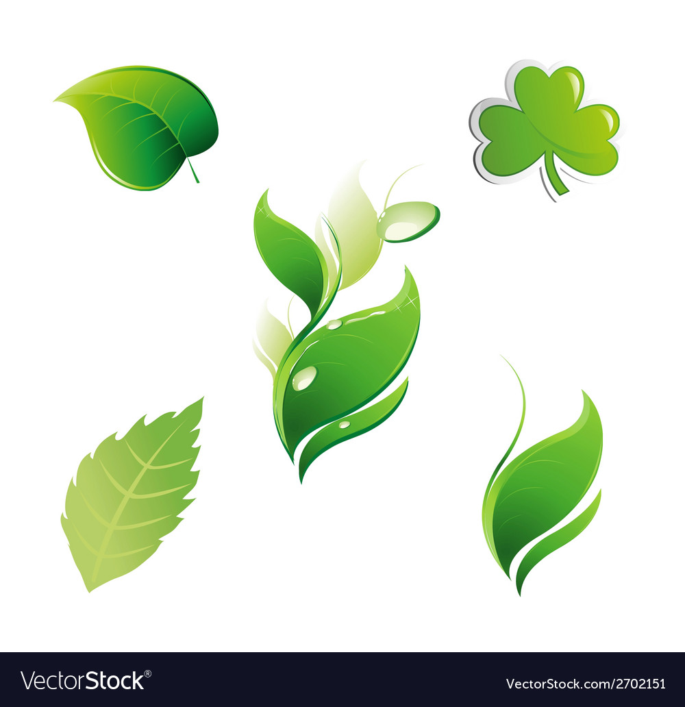 Set of green leaves floral leaf element vector | Price: 1 Credit (USD $1)