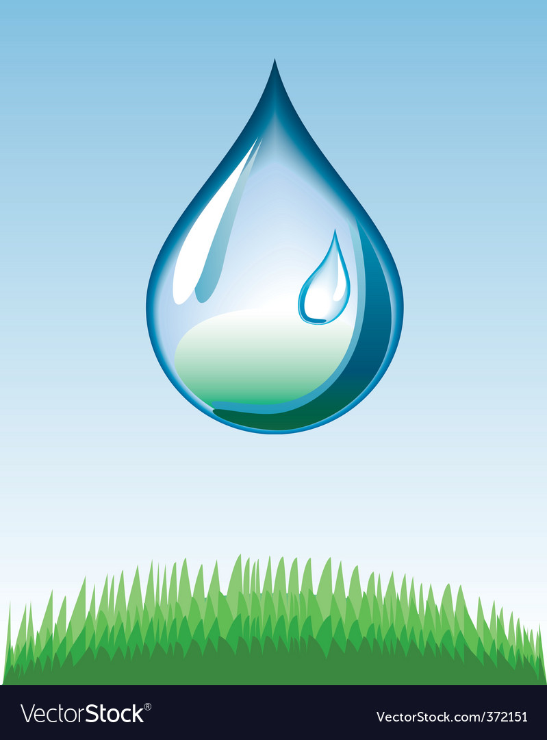 Water drop vector | Price: 1 Credit (USD $1)