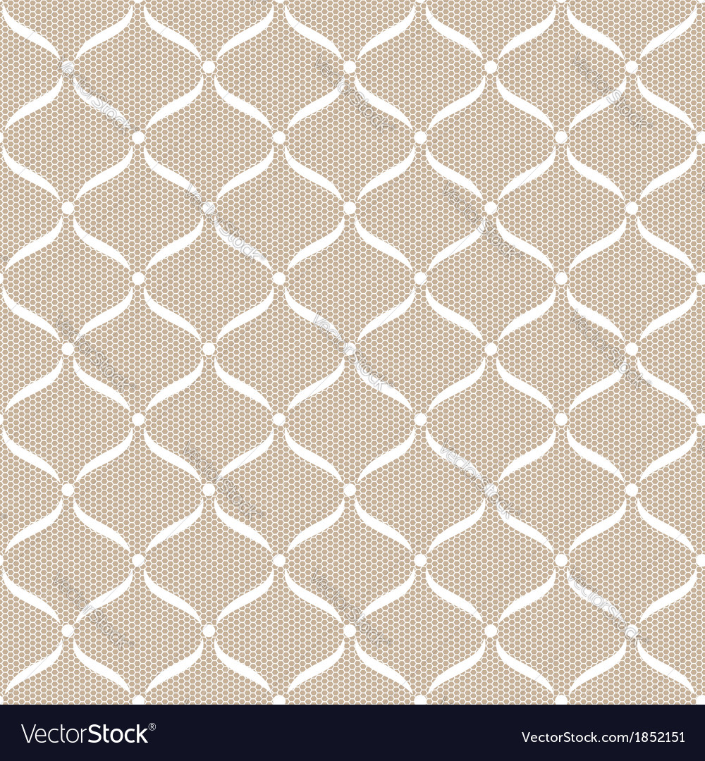 White seamless lace pattern vector