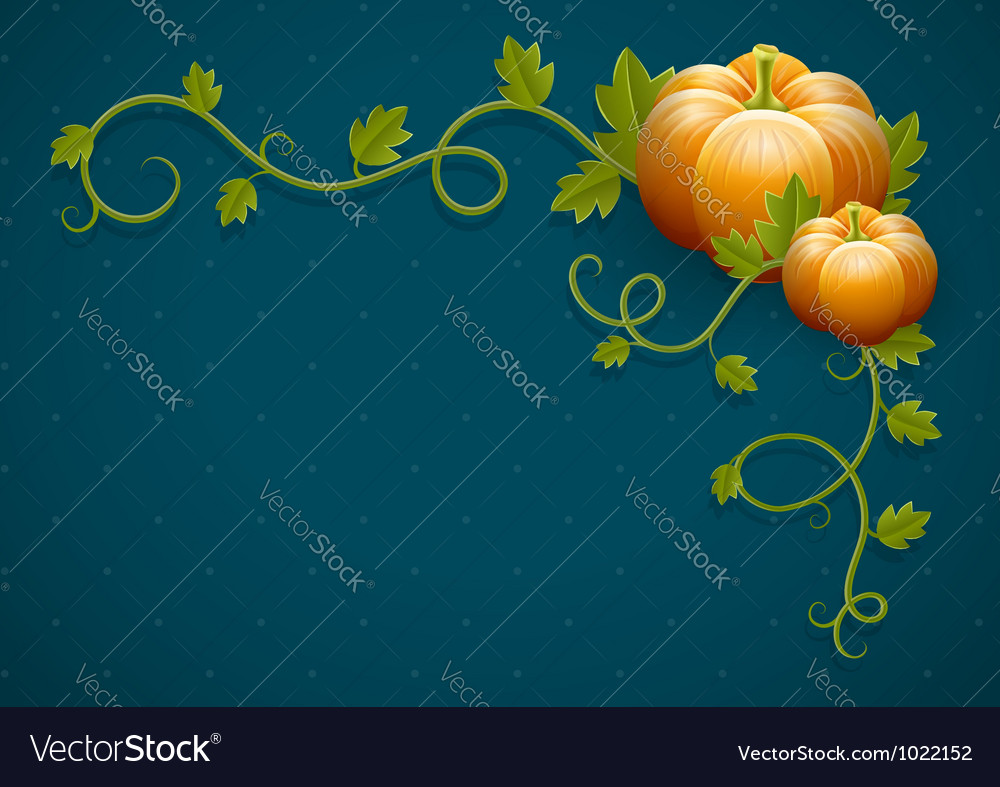 Pumpkin vegetable with green vector | Price: 1 Credit (USD $1)