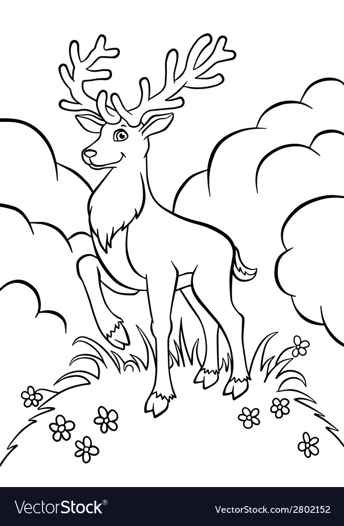 Young deer in the forest vector | Price: 1 Credit (USD $1)