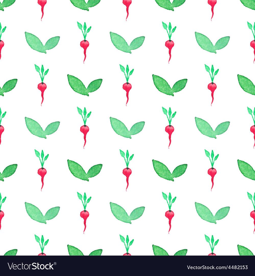 Seamless watercolor pattern with radishes on the vector | Price: 1 Credit (USD $1)