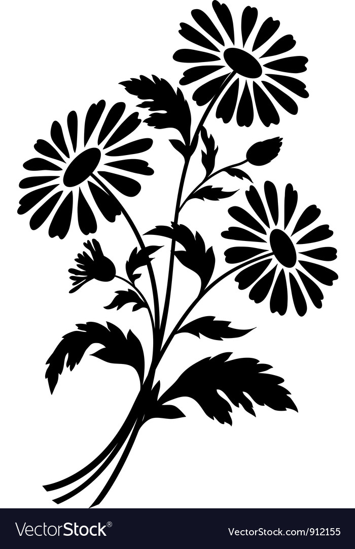 Chamomile flowers silhouettes vector | Price: 1 Credit (USD $1)