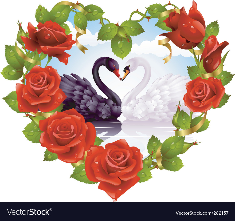 Red roses and couple swans vector | Price: 5 Credit (USD $5)