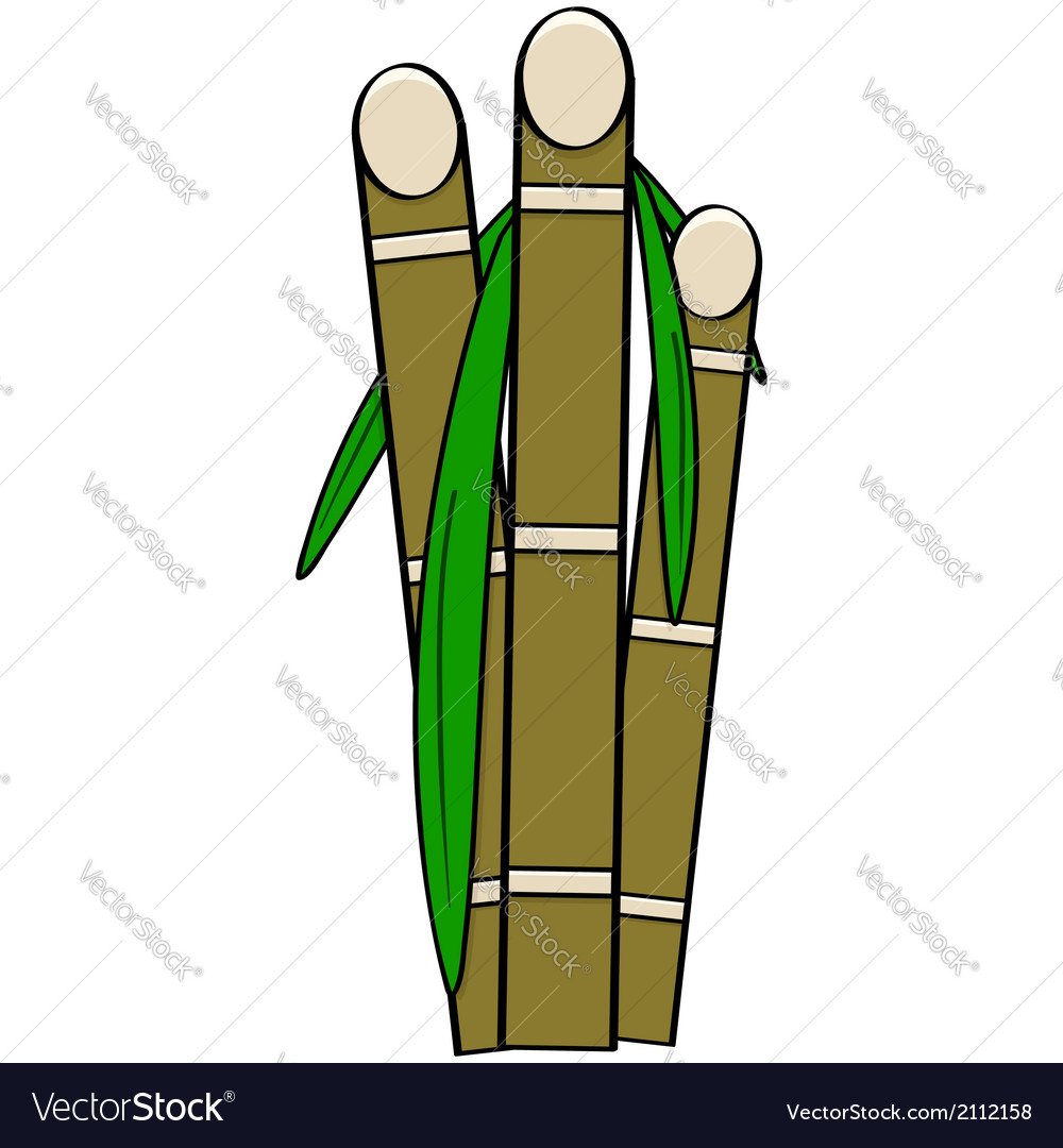 Sugar cane vector | Price: 1 Credit (USD $1)
