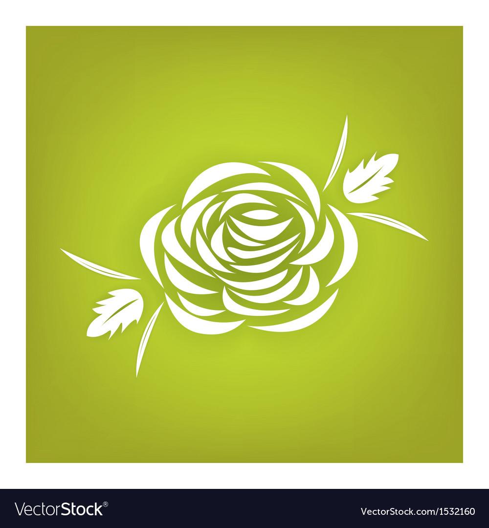 White rose vector | Price: 1 Credit (USD $1)