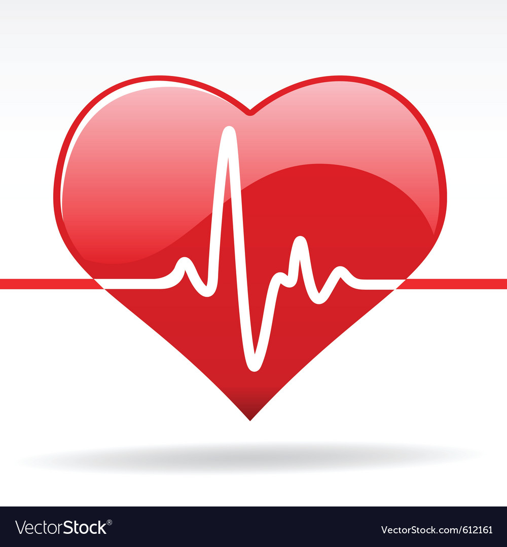 Heart with cardiogram vector | Price: 1 Credit (USD $1)