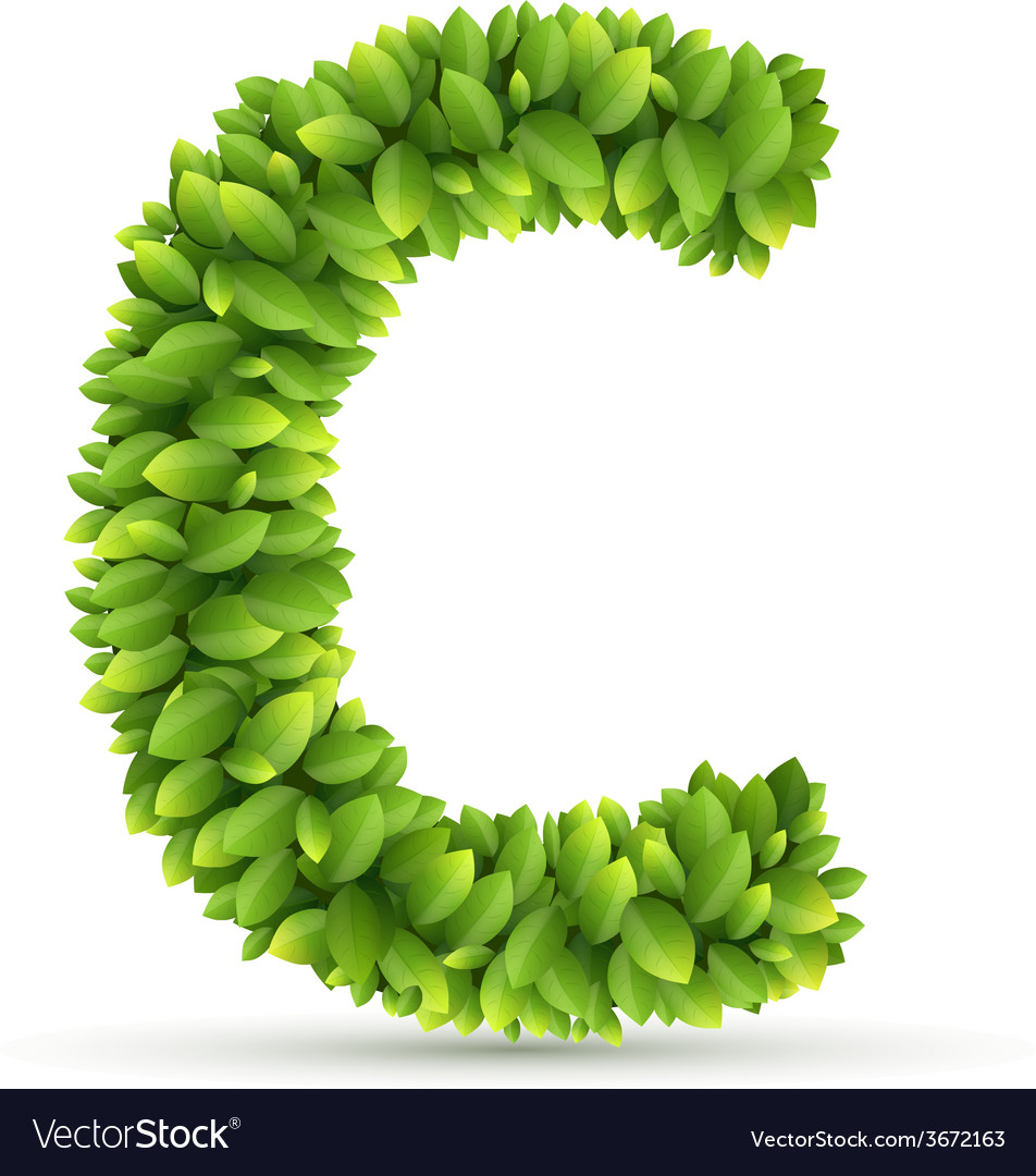 Letter c alphabet of green leaves vector