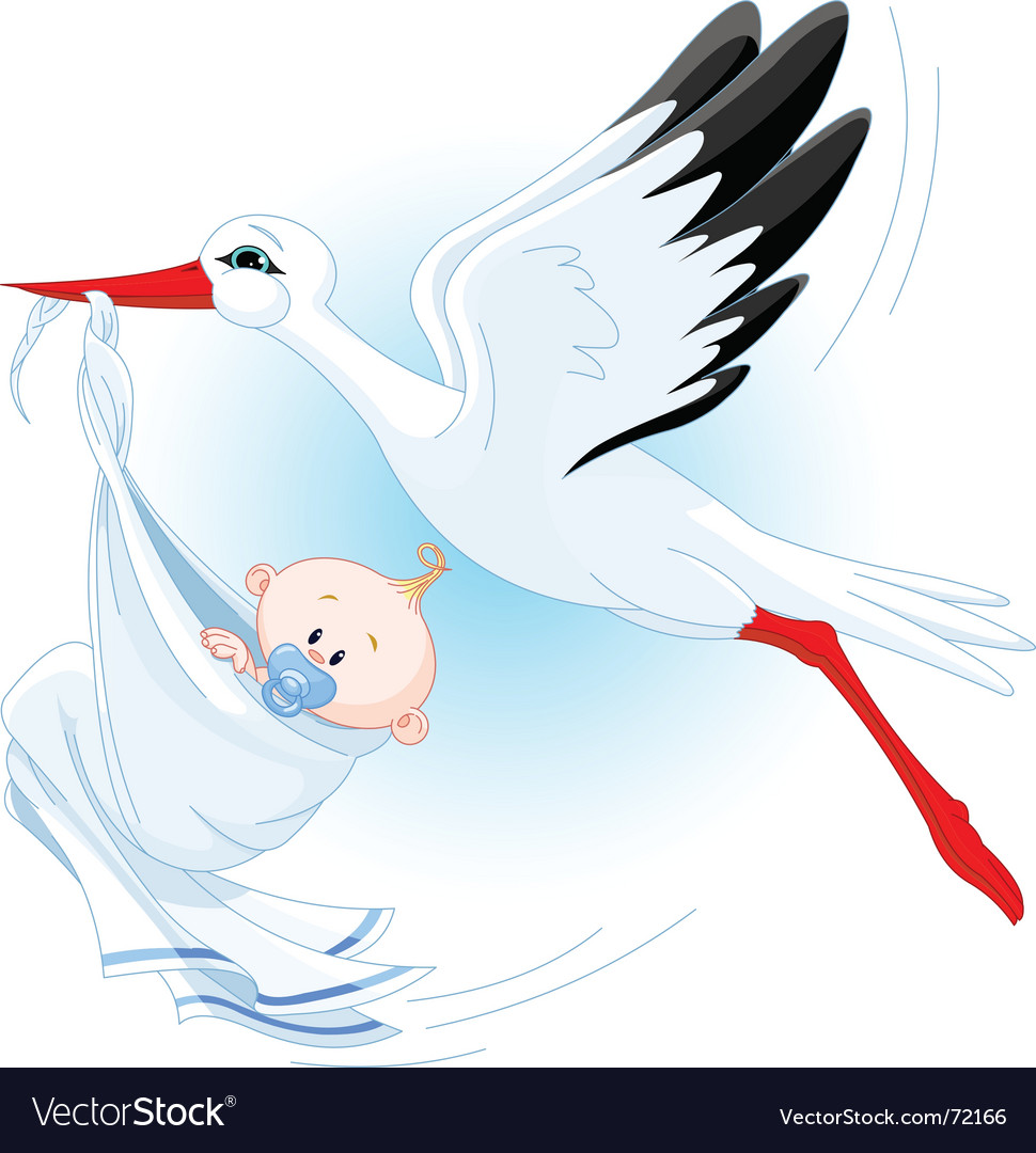 Stork and baby vector | Price: 3 Credit (USD $3)