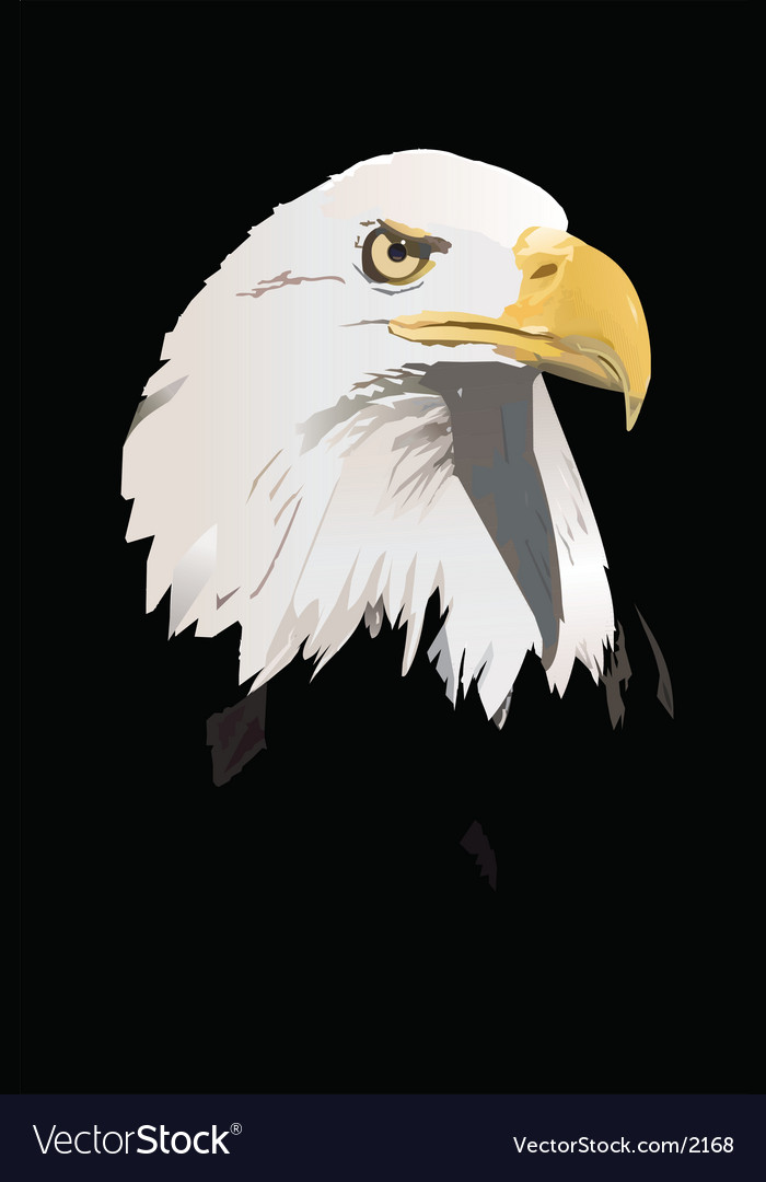 Eagle vector | Price: 3 Credit (USD $3)