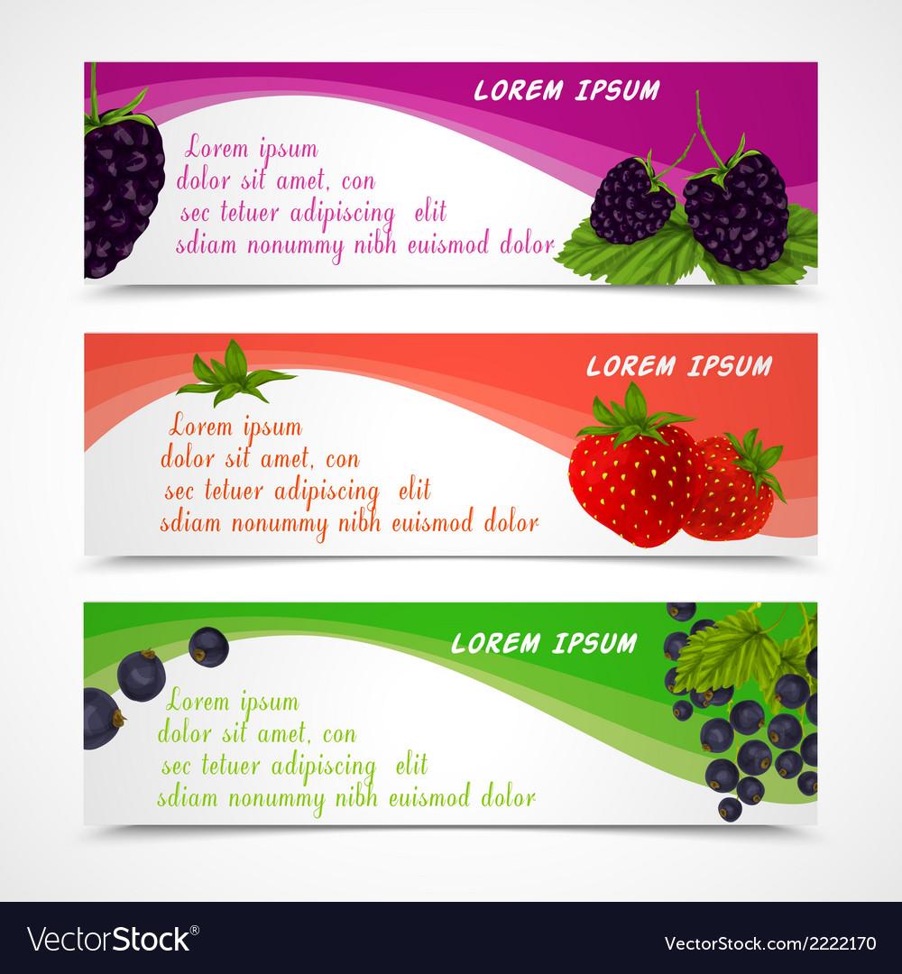 Berries banners set vector | Price: 1 Credit (USD $1)