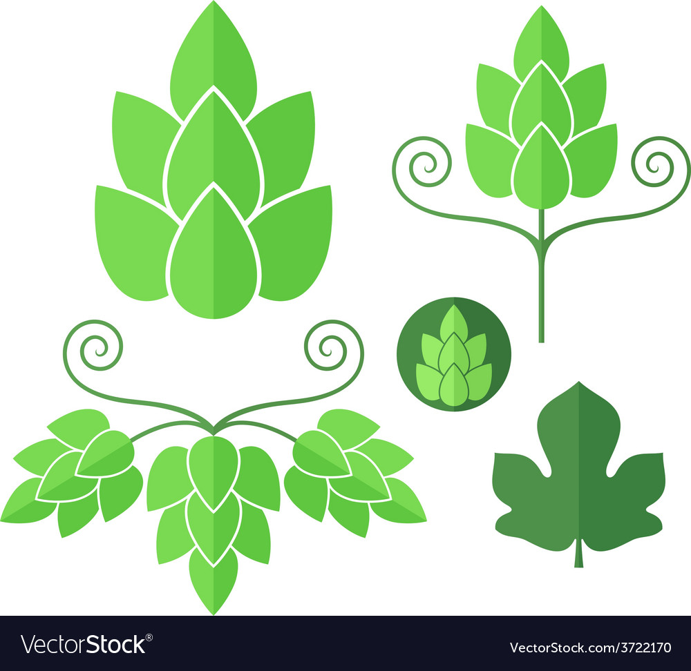Hop set vector