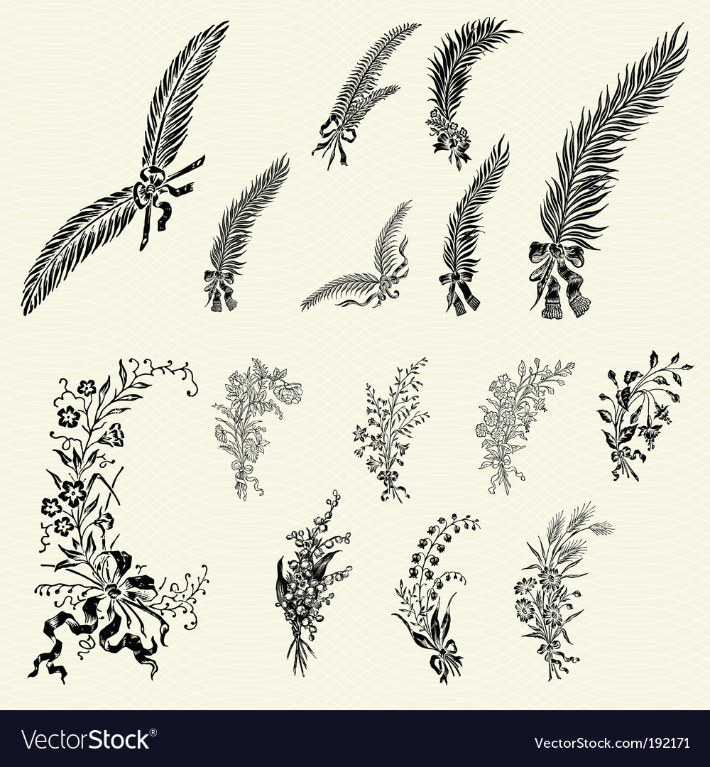 Ornate floral ornaments vector | Price: 1 Credit (USD $1)