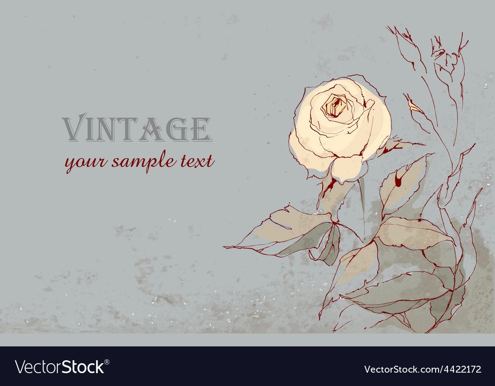 Vintage postcard with a beautiful rose hand-drawin vector   Price: 1 Credit (USD $1)