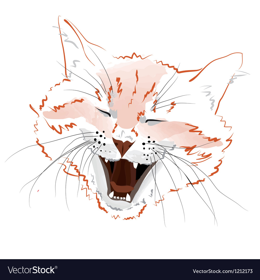 Face red cat vector | Price: 1 Credit (USD $1)