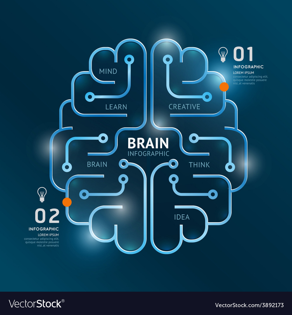 Infographics brain design diagram banner line vector | Price: 1 Credit (USD $1)