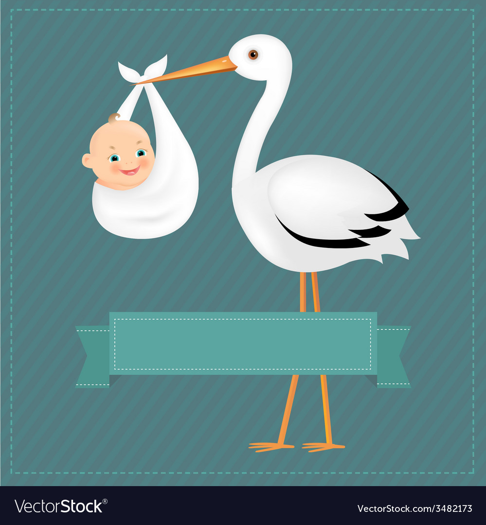 Poster stork with baby boy vector | Price: 1 Credit (USD $1)