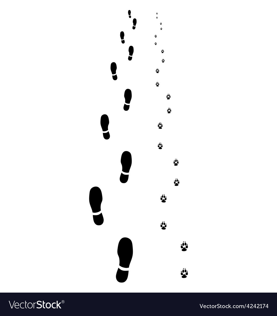 Footprints 2 vector | Price: 1 Credit (USD $1)