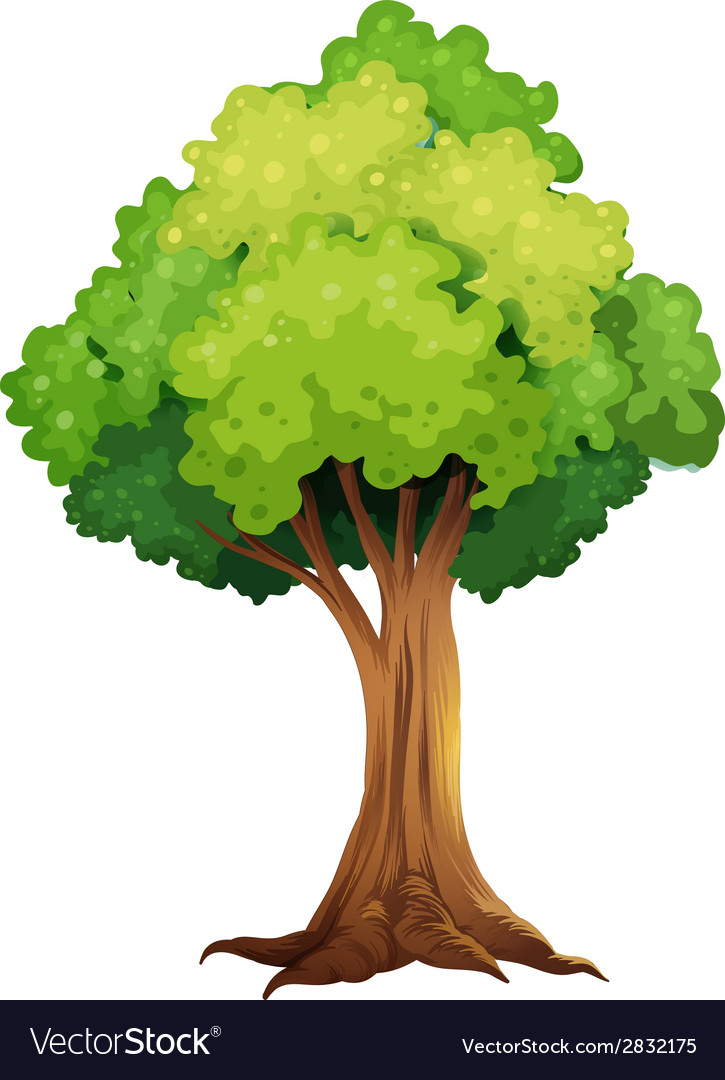 A giant tree vector | Price: 1 Credit (USD $1)