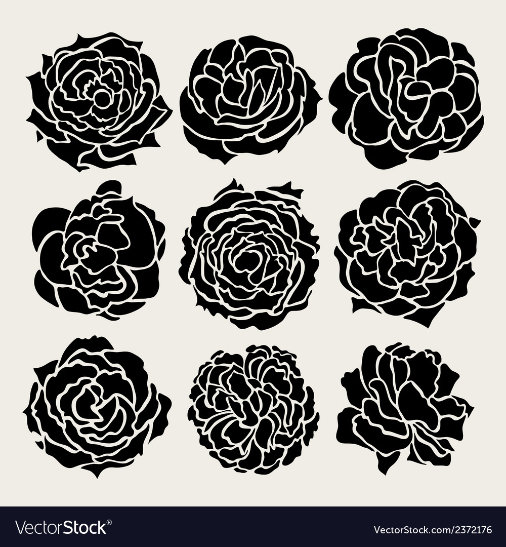 Decorative roses set vector | Price: 1 Credit (USD $1)