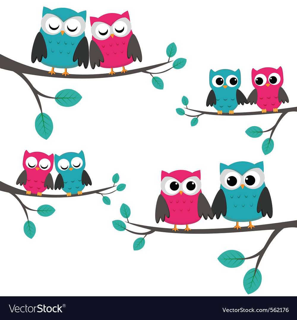 Owls couples set vector