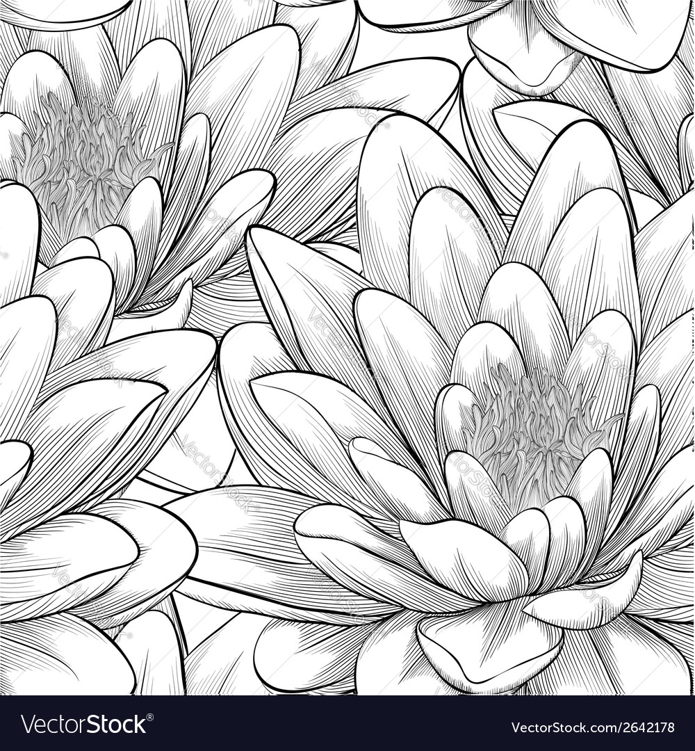 Black and white seamless pattern with lotus flower vector | Price: 1 Credit (USD $1)