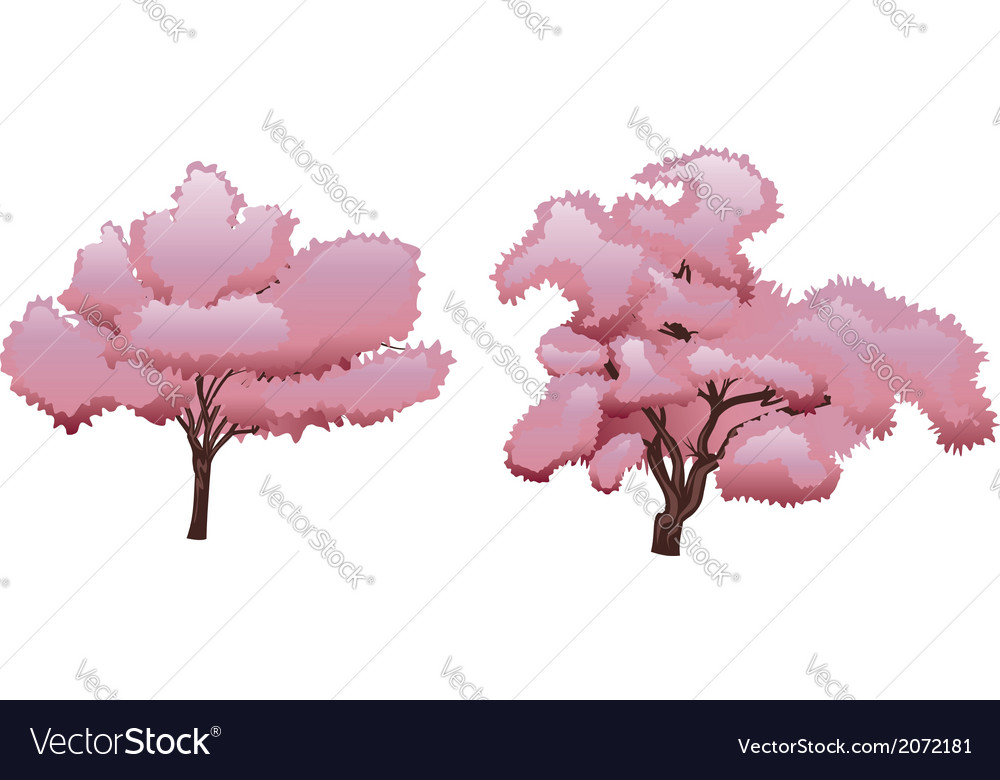 Sakura tree2 vector | Price: 1 Credit (USD $1)