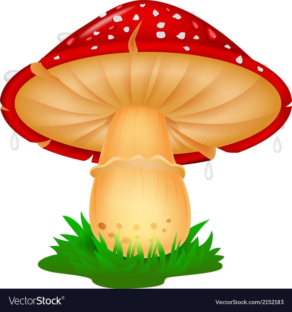 Mushroom cartoon vector | Price: 1 Credit (USD $1)