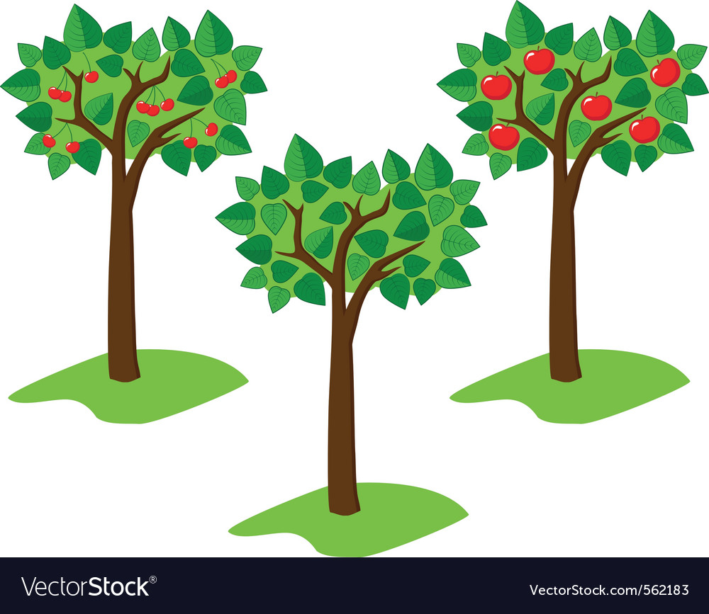 Summer trees vector | Price: 1 Credit (USD $1)
