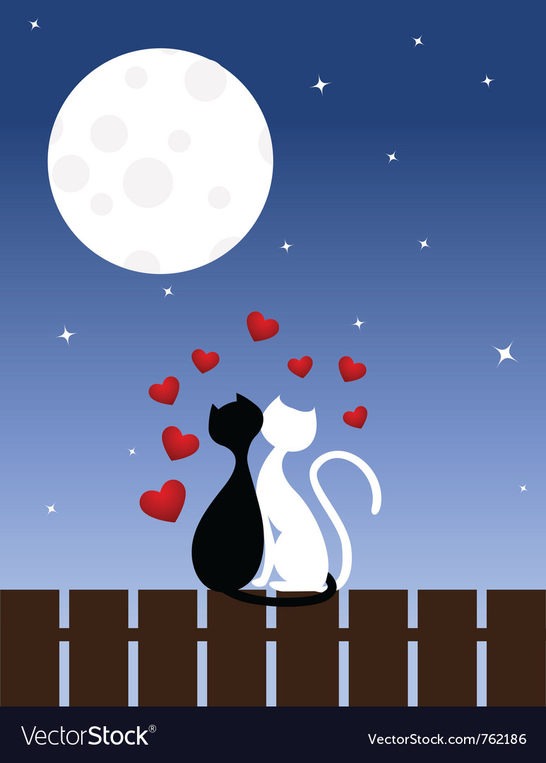 Cats sit on a fence vector | Price: 1 Credit (USD $1)