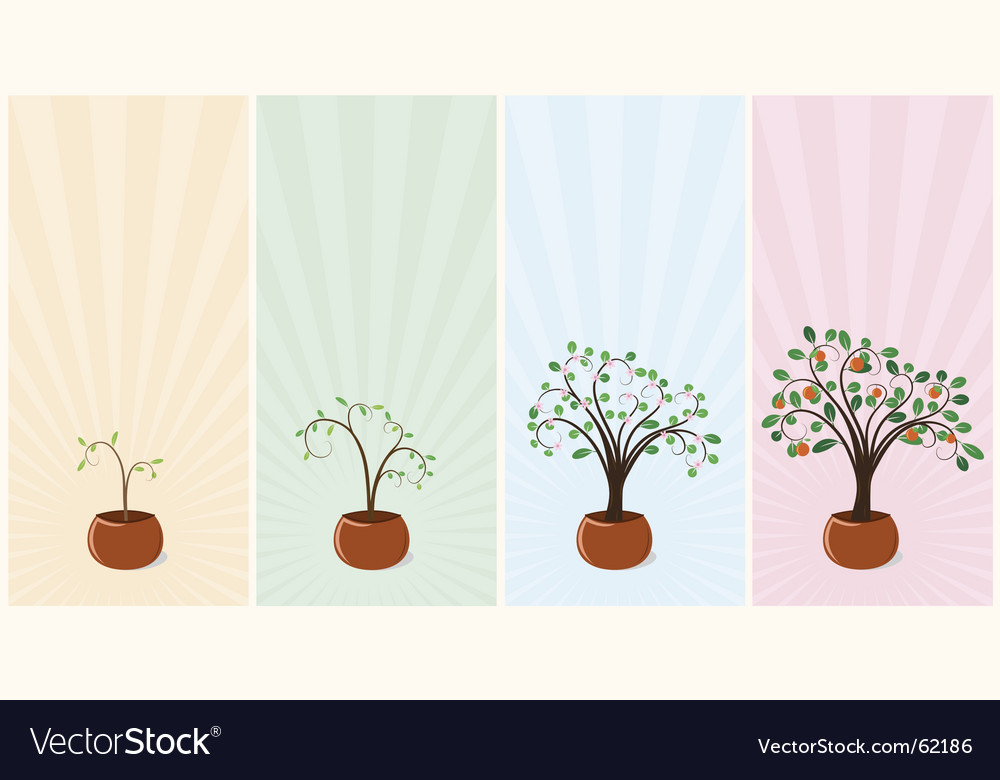 Mandarin trees vector | Price: 1 Credit (USD $1)