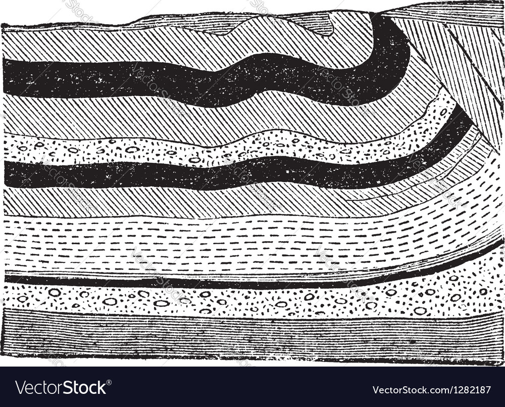 Coal beds ground layers vector | Price: 1 Credit (USD $1)