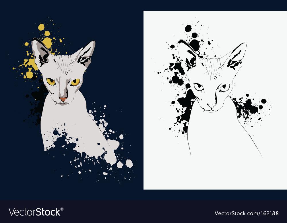 Cat portrait vector | Price: 1 Credit (USD $1)