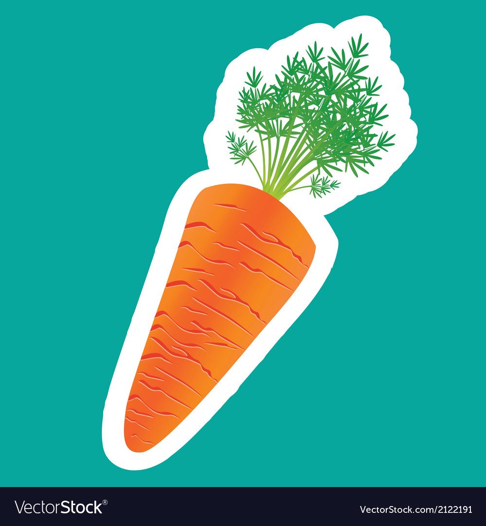 Carrot sticker isolated on turquoise background vector | Price: 1 Credit (USD $1)