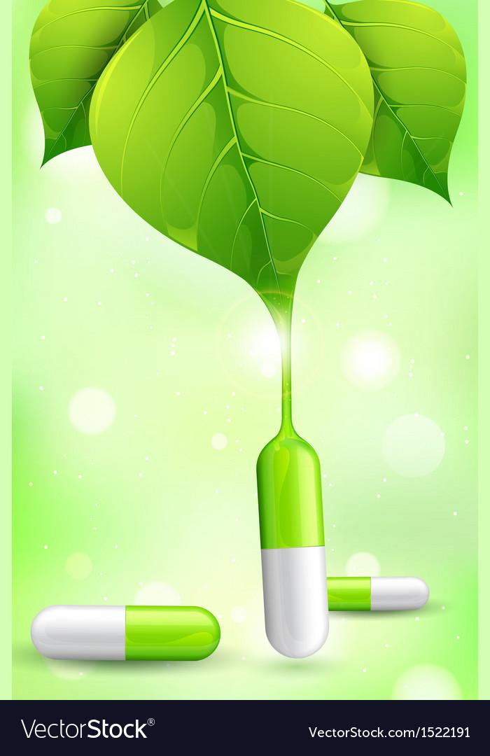 Herbal medicine vector | Price: 1 Credit (USD $1)