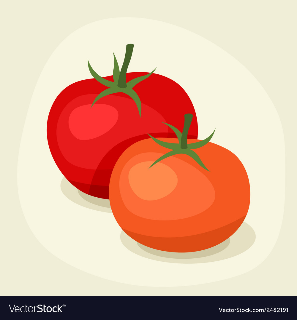 Stylized of fresh ripe tomatoes vector | Price: 1 Credit (USD $1)