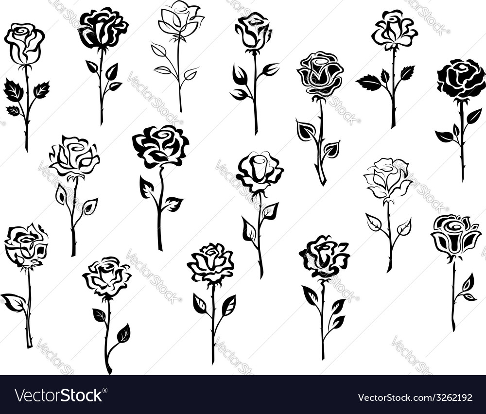 Set of rose icons vector | Price: 1 Credit (USD $1)