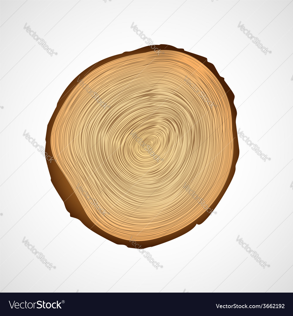 Wood texture of cutted tree trunk vector | Price: 1 Credit (USD $1)