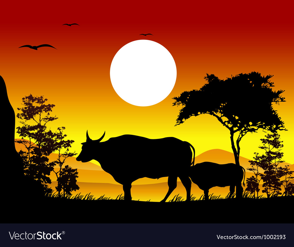 Cow silhouettes with landscape background vector | Price: 1 Credit (USD $1)