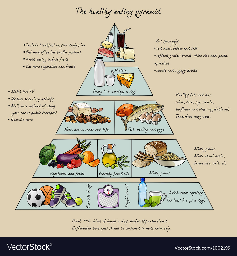 Healthy eating pyramid vector | Price: 1 Credit (USD $1)