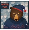 Big brown hipster bear in sweater vector