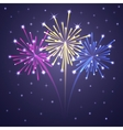 Fireworks colorful 1 vector