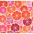 Grapefruit seamless big background vector