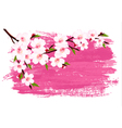 Pink paint sakura branch banner vector