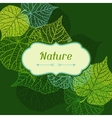 Background of stylized green leaves vector