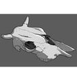 Skull cow vector